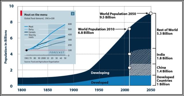aumento población