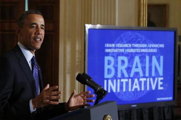 proyecto brain