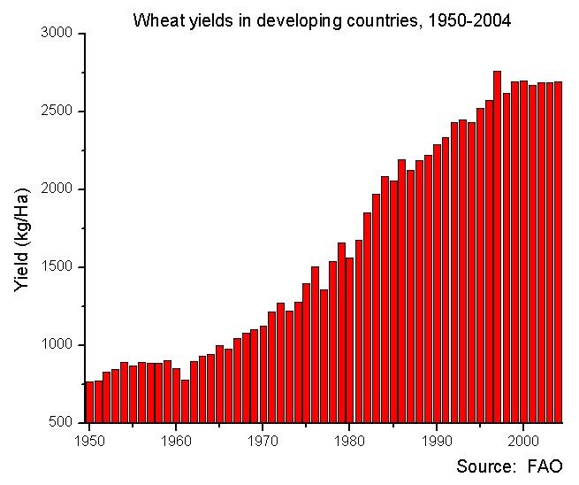 producción trigo