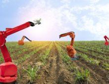 Soluciones Globales de la agricultura. (2.029)